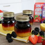 EM Deutschland Marmelade Brombeer-Johannisbeere Erdbeer-Hibiskis Mango-Kiwi