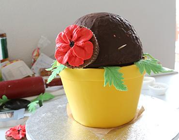 Mohnblumen Strauss Cupcakes Torte Anleitung