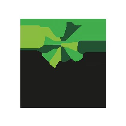 Pure Flavour