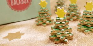 Weihnachts Newsletter